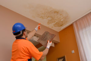 Water Damage Repair Seattle